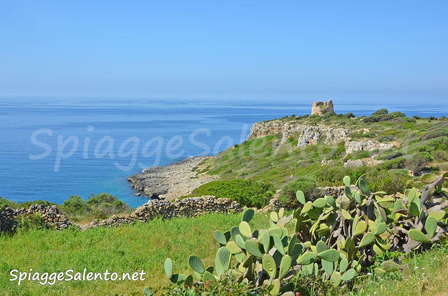 Porto Selvaggio meravigliosa natura Salento