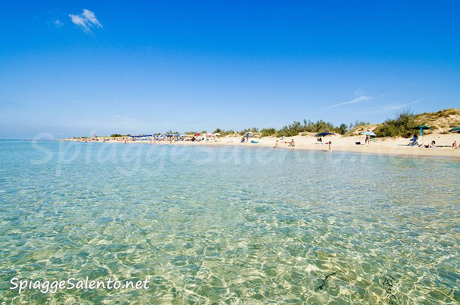 spiaggia di sabbia a Pescoluse nel Salento