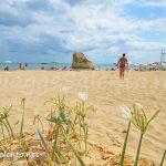 spiaggia-torre-pali-salento